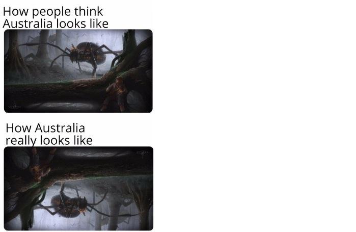 Подборка мемов на английском, изображение 20