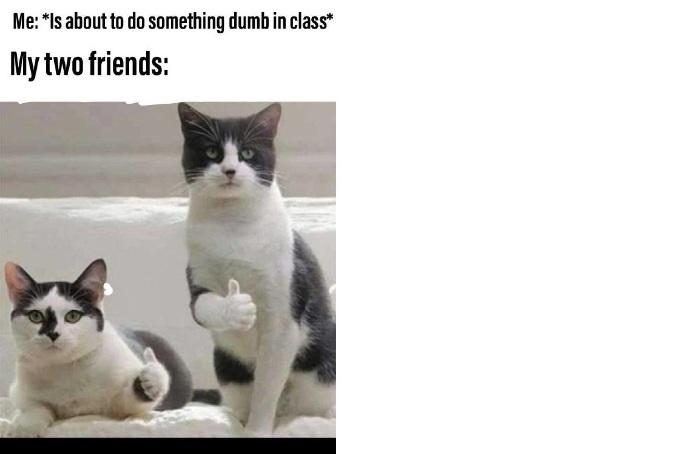 Подборка мемов на английском, изображение 31