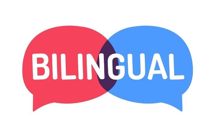 можно ли учить одновременно несколько языков
