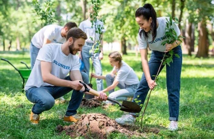 волонтерство в Англії