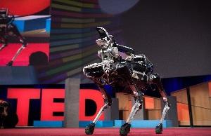Что умеет собака-робот Spot?