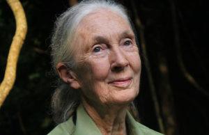 Jane Goodall's speech about peace